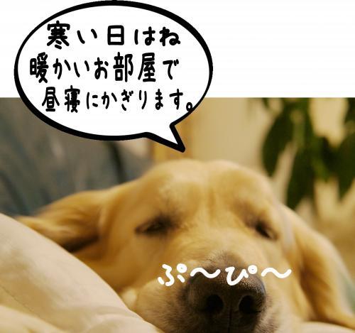 2_convert_20120118153743.jpg