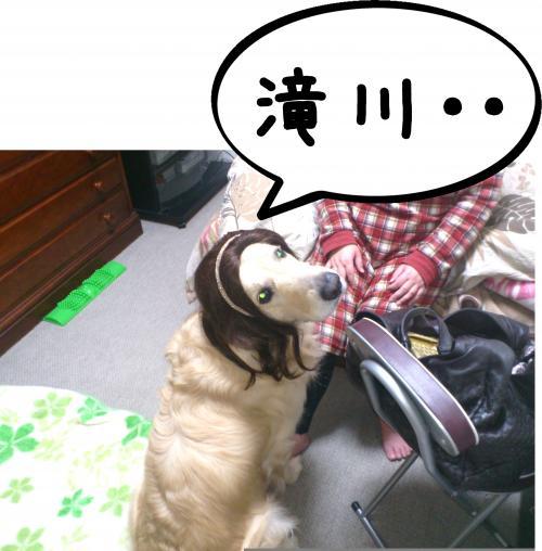 2_convert_20120417150628.jpg