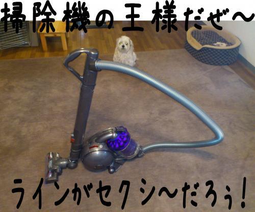 2_convert_20120421211818.jpg