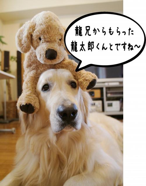 5_convert_20120118153937.jpg