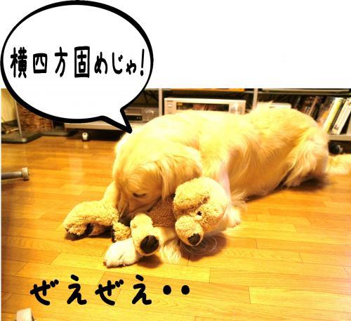 8_convert_20120118154202.jpg