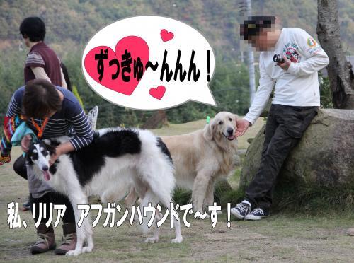 9_convert_20111204212002.jpg