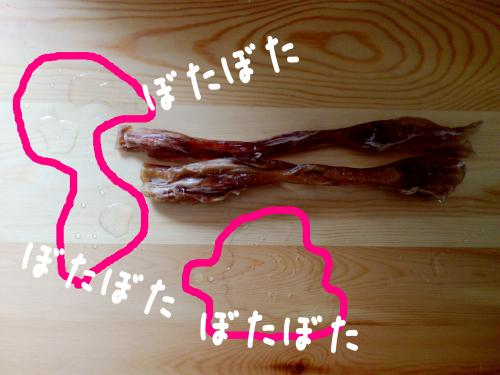 fuyu3_convert_20120320101930.jpg