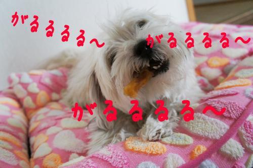 fuyu8_convert_20120320102234.jpg