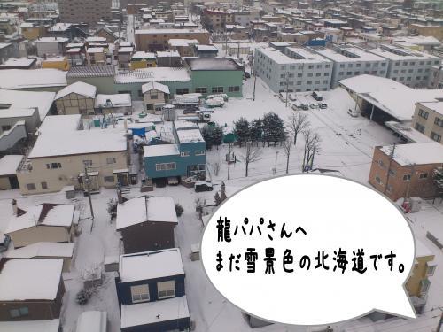 fuyu9_convert_20120320102305.jpg