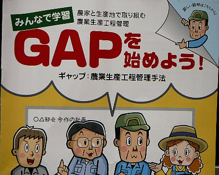 GAP研修