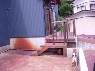 犬と工房入り口