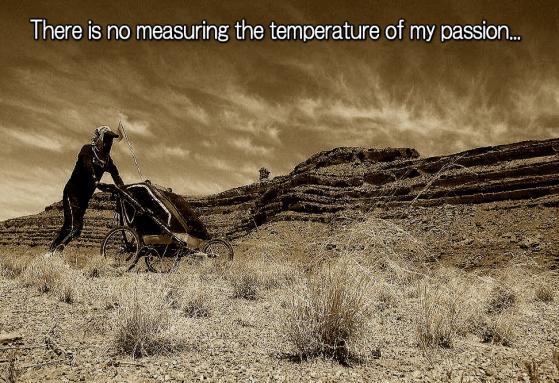 temperature_of_passion