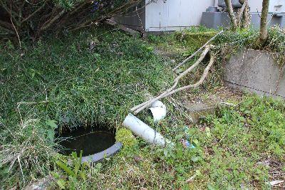 庭に埋められている壺