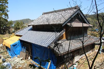 古瓦と新瓦の屋根
