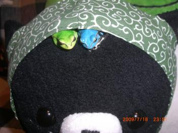 盗とカエル