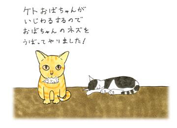 i_kegu_02t.jpg
