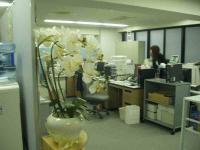 new+office1 縮小
