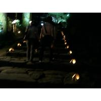 竹灯篭階段
