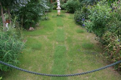 2009-08-15_04.jpg