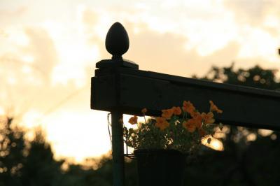 2009-08-23_117.jpg