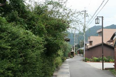 2009-08-29_34.jpg