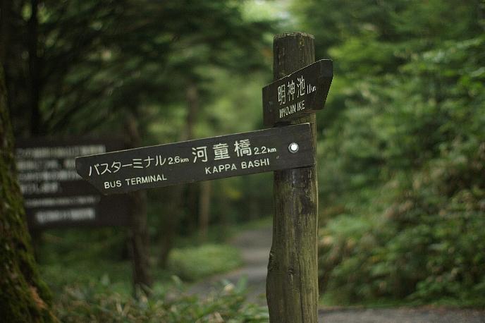 朝晩めっきり涼しくなった京都です