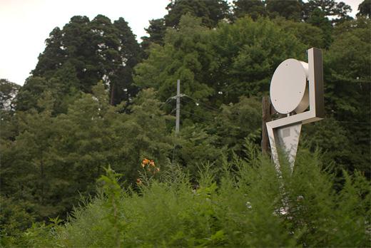20090822-7.jpg