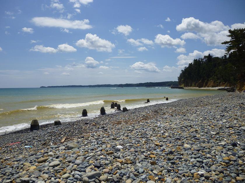 東北支援:きれいになった海