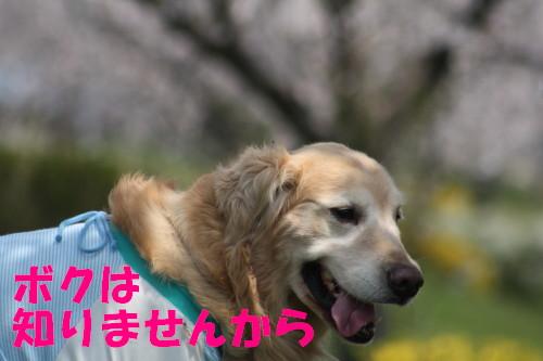bu-72040001.jpg