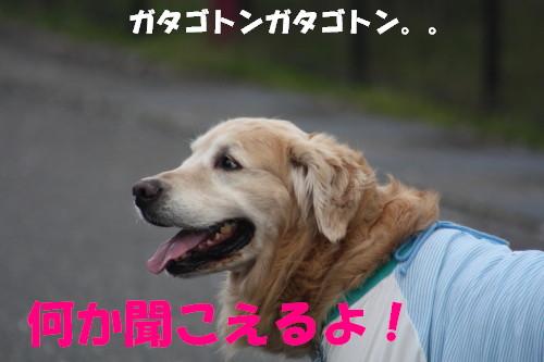bu-72150001.jpg