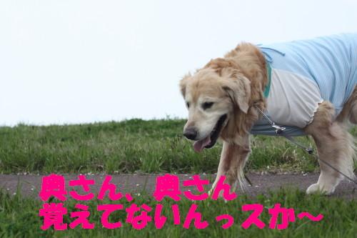 bu-7244a0001.jpg