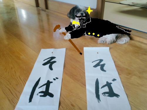 コピー (2) ~ そば4