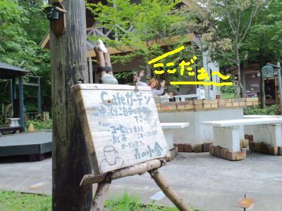 コピー ~ 森の小舎