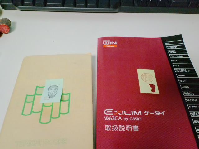 CA3C0621.jpg