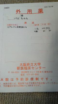 blog用 011