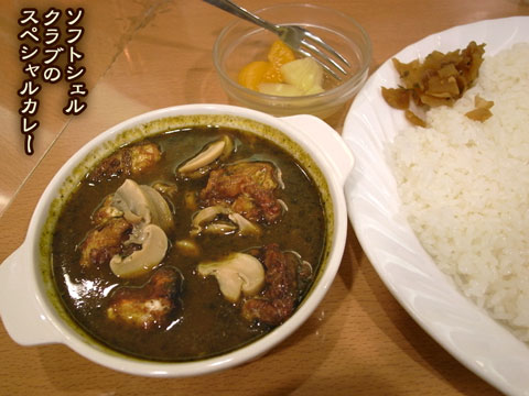 currysofts.jpg