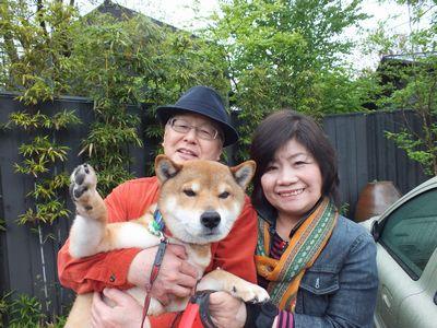 2_DSCF1881 柴犬 シンちゃん