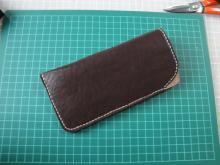 sunglasses case 010