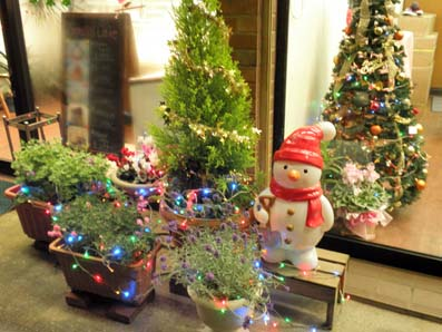 クリスマス店舗