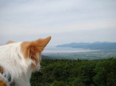 北海道はでっかいどー!