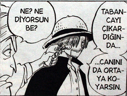 トルコ語版8