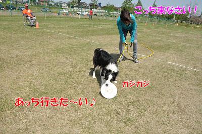 201105-nda07.jpg