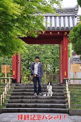 20110501-uji02.jpg
