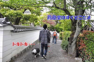 20110501-uji04.jpg