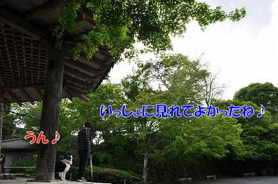 20110501-uji07.jpg