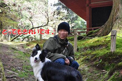 20110502-hiei08.jpg
