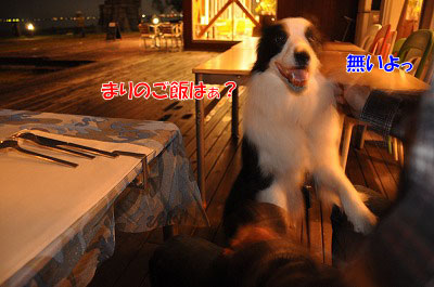 20110502-nagi05.jpg