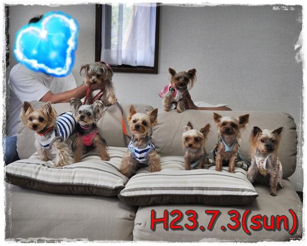 24_20110713213207.jpg