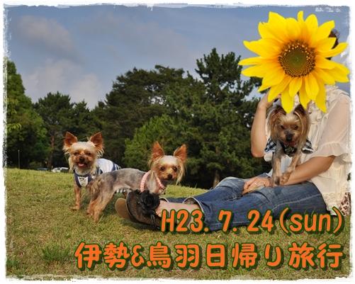 33_20110729233603.jpg