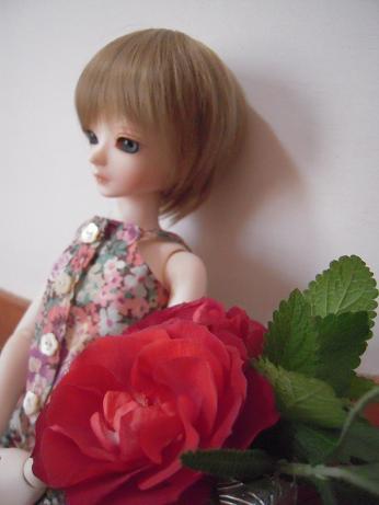 blanca_rose03.jpg