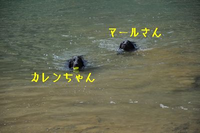b20120416-DSC_0362.jpg