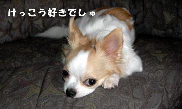 11marine0804_04.jpg