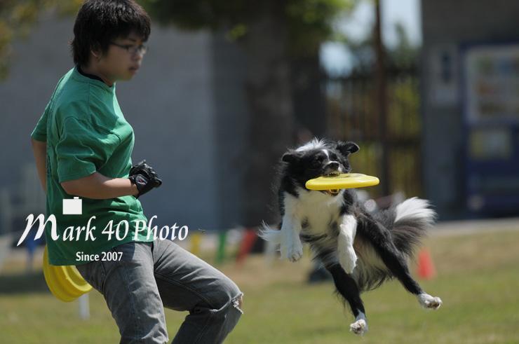 AvF4.0 Tv1/2500 ISO200