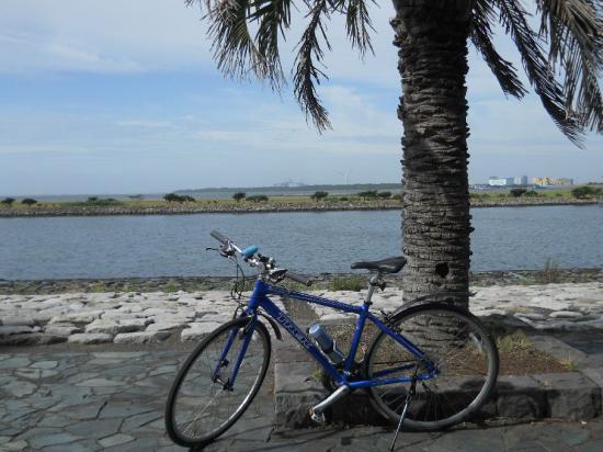 サイクリング7-17 (12)